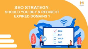 SEO's Strategy: Should You Buy & Redirect Expired Domains?