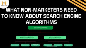 A Basic Primer for Non-Marketers on how do search engine algorithms work?